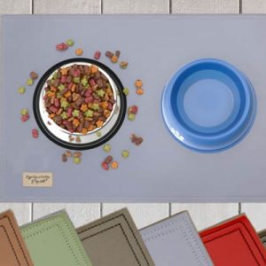 dog bowl placemat sitting on a floor with food and water on top (and color pallet along the bottom)