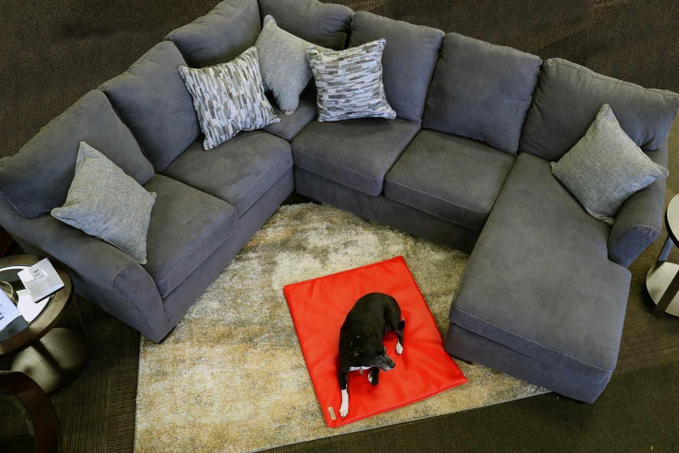 Red dog mat in living room with a sectional couch