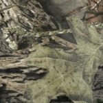 Camo (made from Mossy Oak 100% cotton fabric)