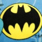 Superhero (made from DC Comics Batman fleece)