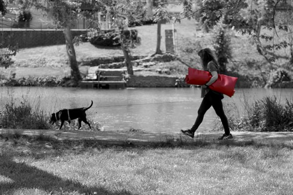 Lady walking her black dog in the park with a red mat under her arm